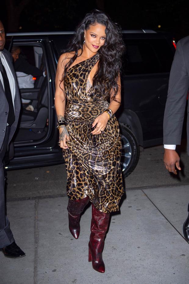 Rihanna e l'abito di Saint Laurent: autunno animalier