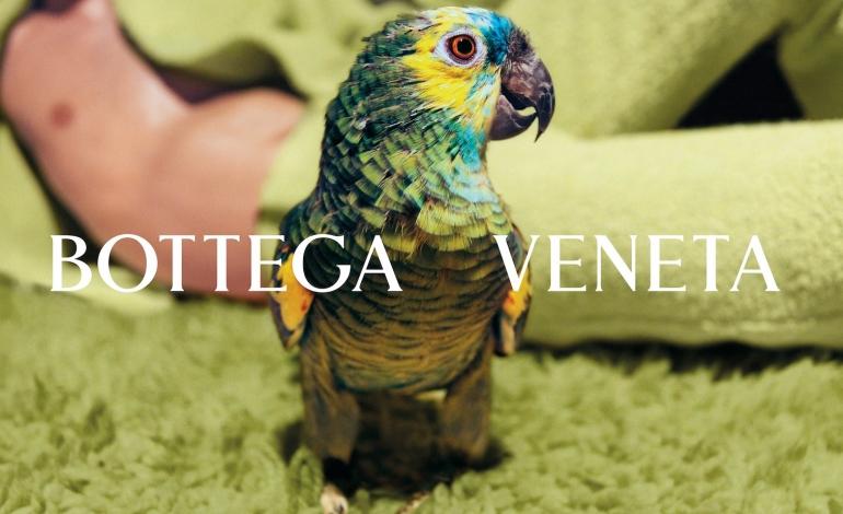 Bottega Veneta returns for Salon 01